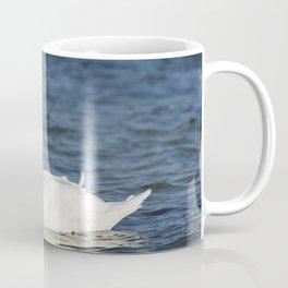 White swan Cygnus Coffee Mug