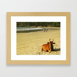 Indian moo Framed Art Print