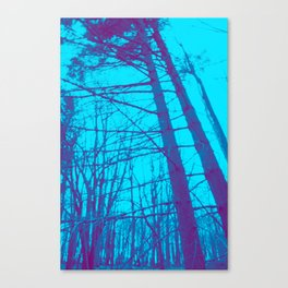 60 Canvas Print