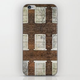 Neighboring windows iPhone Skin