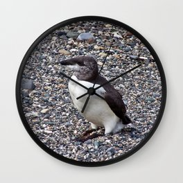 Razorbill on the Rocks Wall Clock