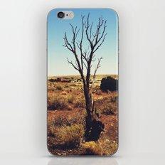 Arizona Desert Landscape Photograph - Wupatki National Monument iPhone & iPod Skin