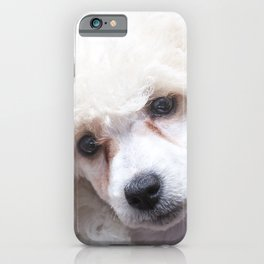 The Innocence of a Puppy iPhone Case