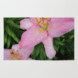Pink Lily Rug