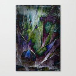 Multi-Colored Agave Canvas Print