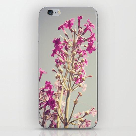 Hello Spring iPhone & iPod Skin