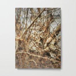 Branches - Winter 2017 Metal Print