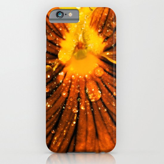 Pansy iPhone & iPod Case