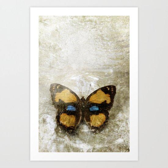 Vintage Butterfly 2 Art Print