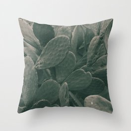 Still life, nature photography, living room, vintage, fine art for kitchen decor, nature love Throw Pillow