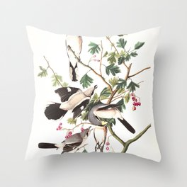 Great cinereous shrike or butcher bird, Birds of America, Audubon Plate 192 Throw Pillow