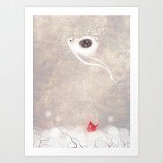 Starbelly Falling Art Print