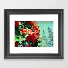 Brightening II Framed Art Print