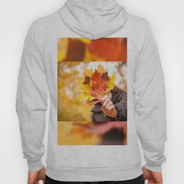 Acer autumn bunch yellow red leaves Hoody