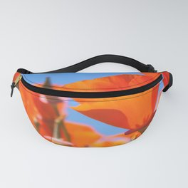 California Gold Fanny Pack