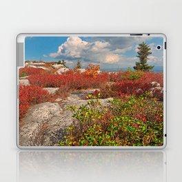 Dolly Sods Ruby Rockscape Laptop & iPad Skin
