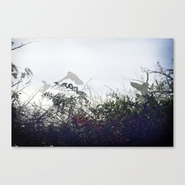 Fear Canvas Print