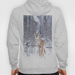 Bambi nature Hoody