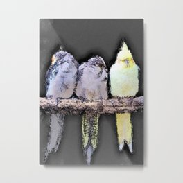 Sleepy Parakeets Sharing a Perch Metal Print