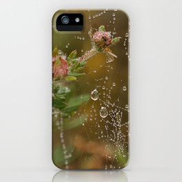 Fairy Whispers - Nature Art iPhone Case