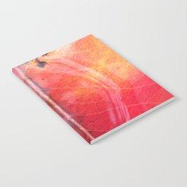 Red Leaf in the Rain Notebook