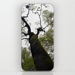 secret garden 18 iPhone Skin