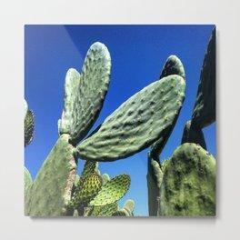 #14Photo #GreenAndBlue #Succulent #Cactus Metal Print