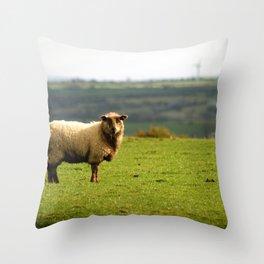 Solitary Sheep Throw Pillow