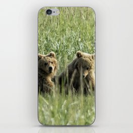 Brown Bear Cubs - Before Play iPhone Skin