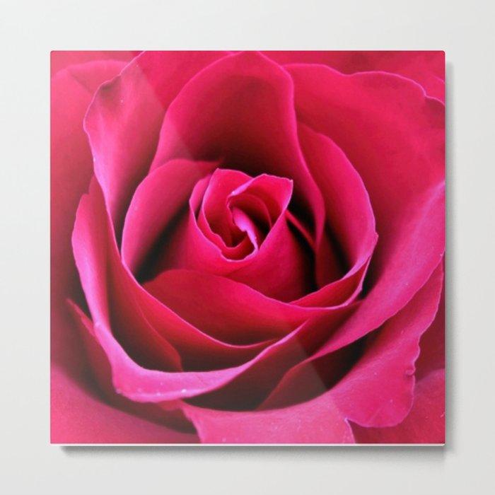 Red Rose Love Metal Print