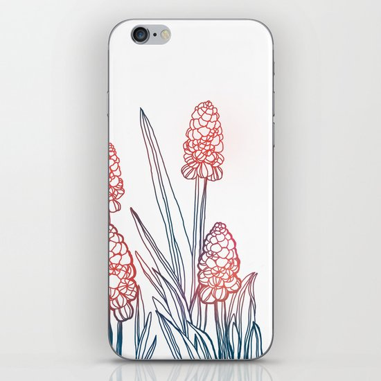Hyacinths iPhone & iPod Skin