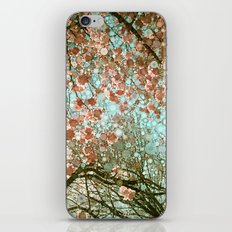 Spring #2 iPhone & iPod Skin