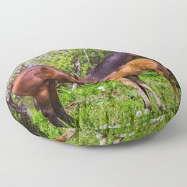 Mother horse with little foal Floor Pillow