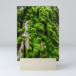 tree musk bark Mini Art Print