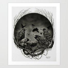 Corvidae Art Print