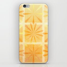 Citrus Burst iPhone Skin