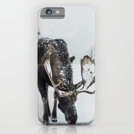 moose #society6 #decor #buyart iPhone Case