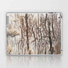 Beyond Cracks Laptop & iPad Skin