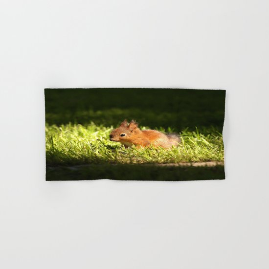 Cute Squirrel Cub  Hand & Bath Towel