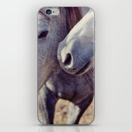Horse Kisses iPhone Skin