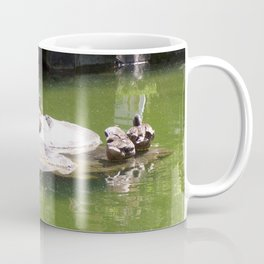 Ducks on a Rock in the Middle of a Pond, Wildlife, Ducks, Water Coffee Mug