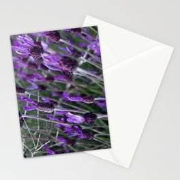 Spanish Lavender Stationery Cards