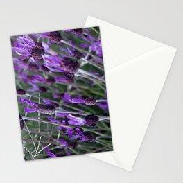 Spanish Lavender Stationery Cards