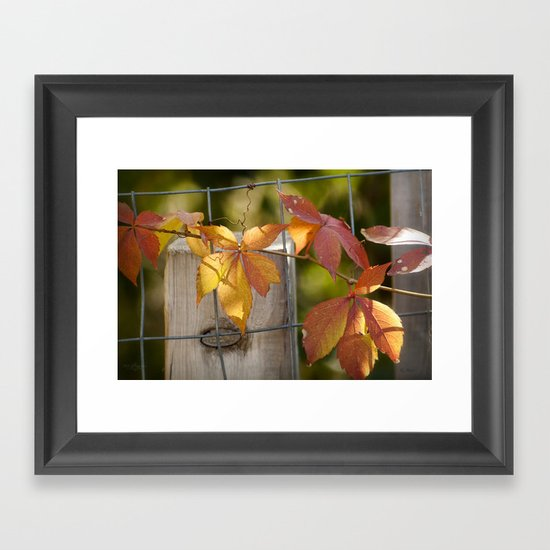 Holding on to the Warmth Framed Art Print