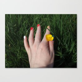 Rainbows and Buttercups Canvas Print