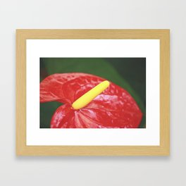 Flamingo Flower Framed Art Print