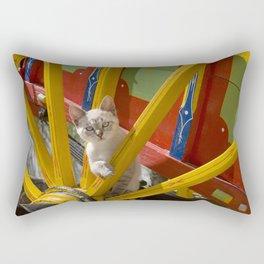 kitten on an Algarve cart, Portugal Rectangular Pillow