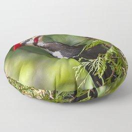 Pileated Woodpecker 6340 Floor Pillow
