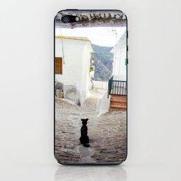 Portrait of a Dog iPhone Skin
