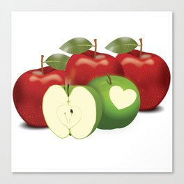 Apple with heart and a leaf in style Canvas Print